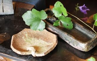 うなぎと陶器、柳川のうなぎ料理屋「皿屋 福柳」